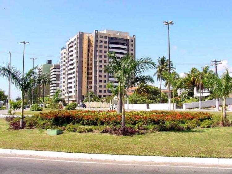 Prefeitura de Aracaju quer plantar 100 mil árvores até 2004