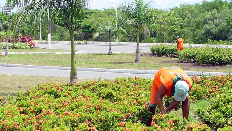 Prefeitura inicia recuperação de canteiros da avenida Beira Mar