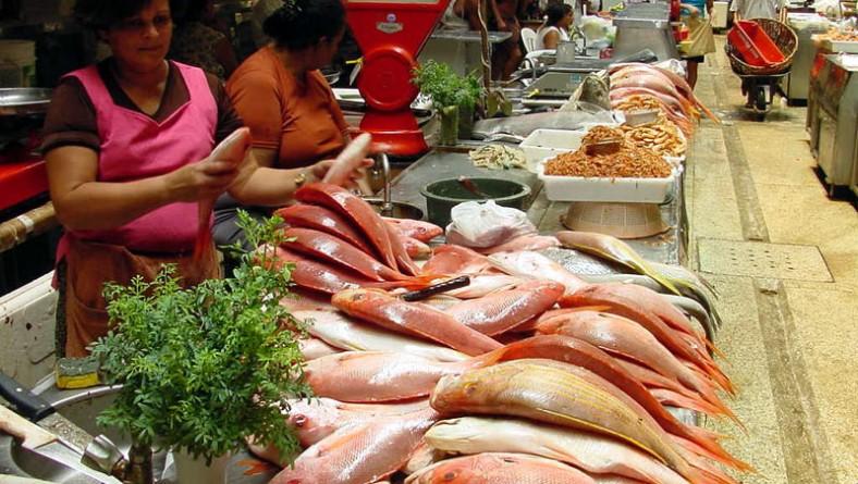 Vigilância Sanitária intensifica fiscalização do pescado
