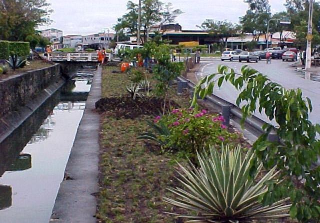 Projeto paisagístico da avenida Gentil Tavares está concluído