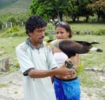 PMA proporciona aulas de preservação ambiental para jovens no Parque dos Falcões - Fotos: Abmael Eduardo  AAN  Clique na foto e amplie