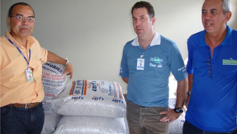 Governo estimula cultivo do algodão em Sergipe
