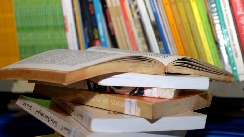 Empréstimo de livros na BPED cresce 20% em 2011